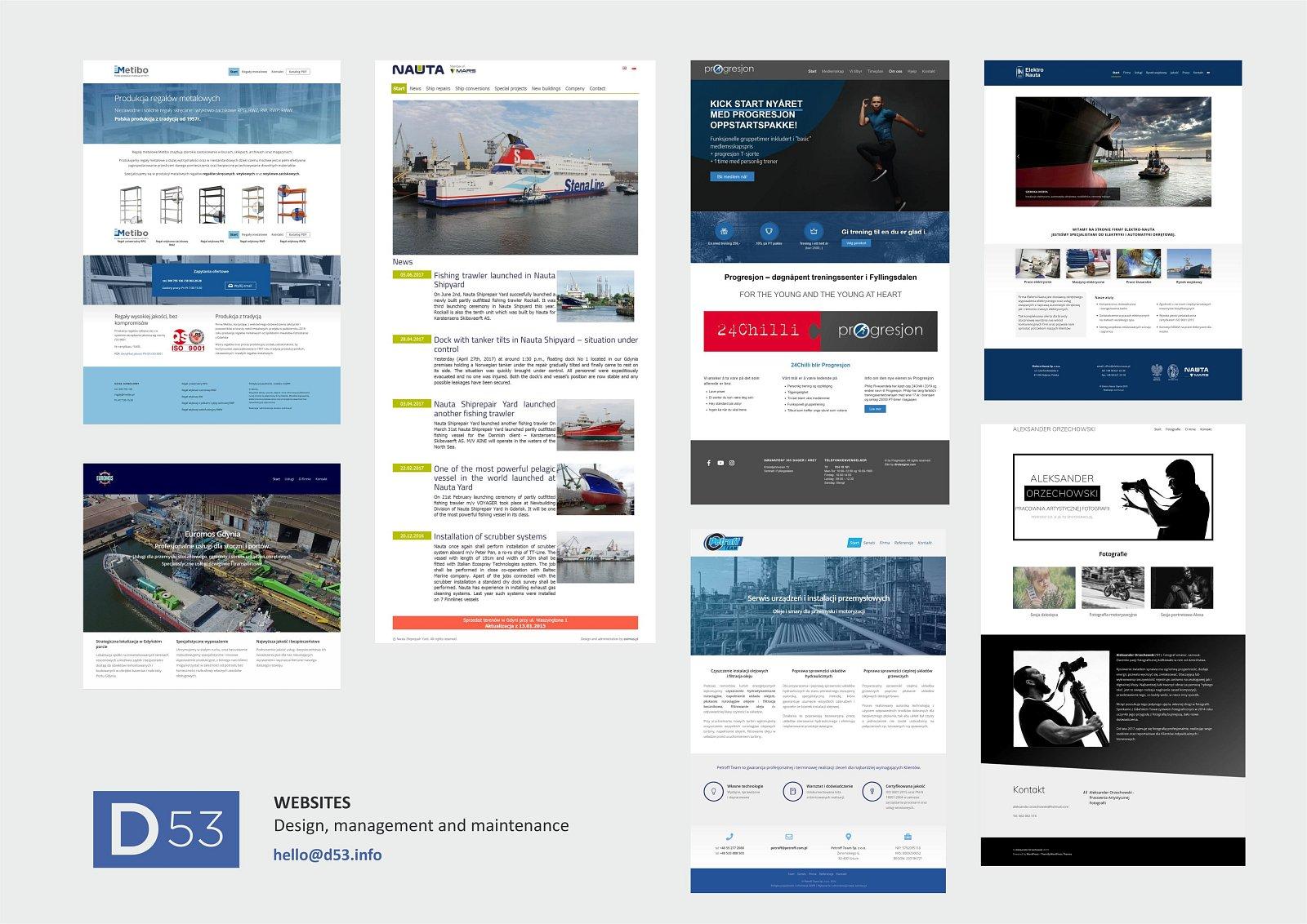 D53 visual experts